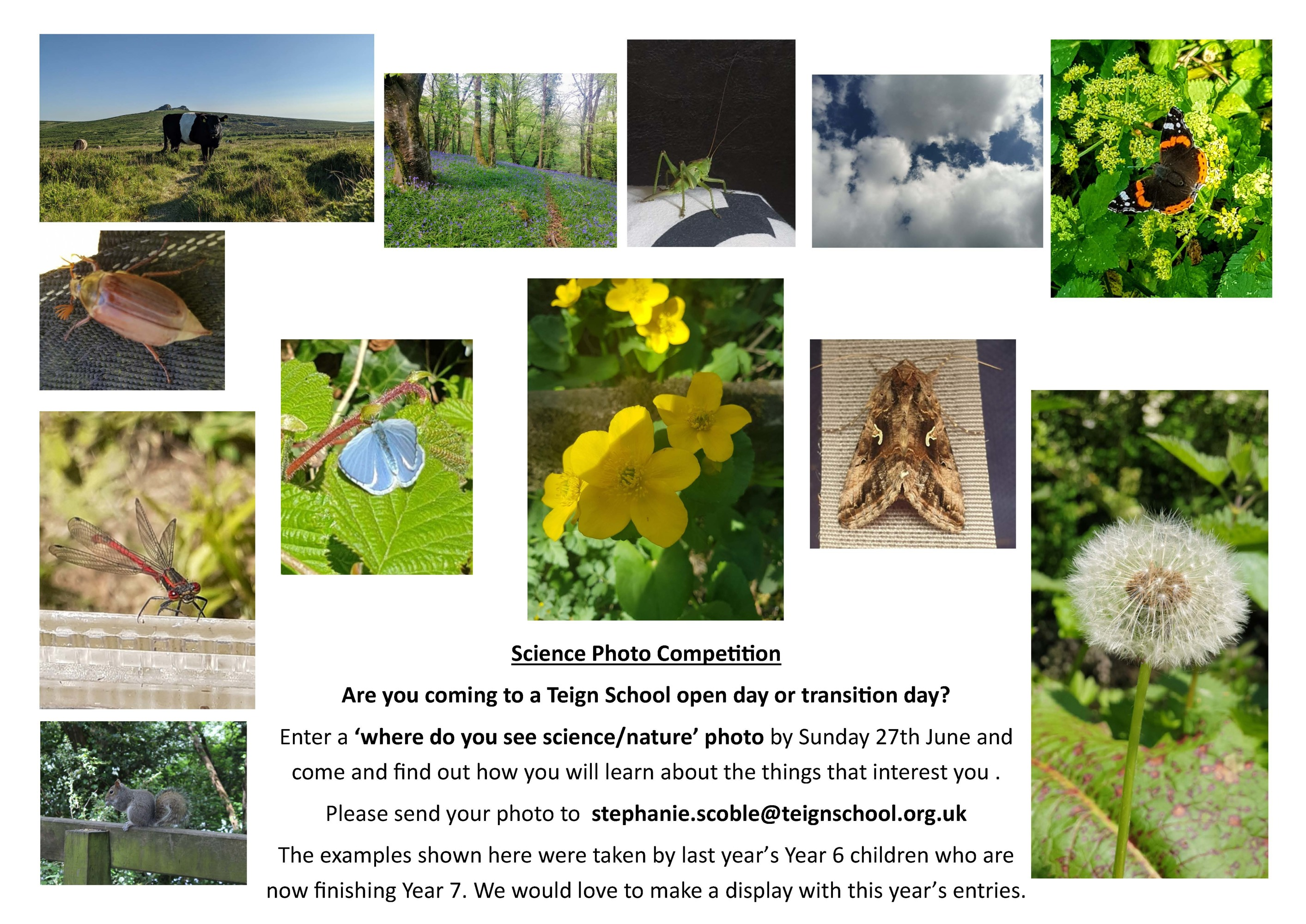 2021 teign science photo competition